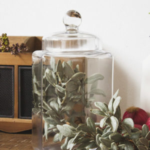 vaso in vetro portabiscotti